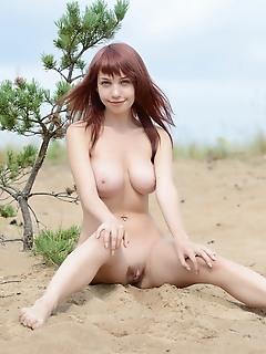 Sexy bunny