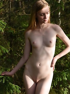 Going nasty in the forest