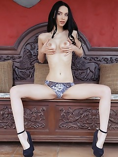 Dita v alluring dita v bares her long, slender body and perky tits   as she poses in front of the camera.