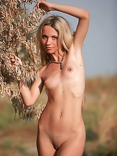 Fresh, naturally beautiful blonde unihibitedly naked amidst a dry grassland.
