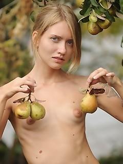 Animalistic erotica
