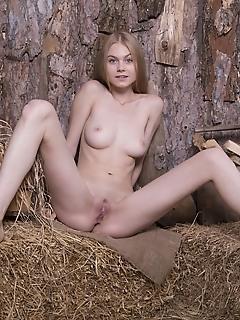 Lumber mill fun