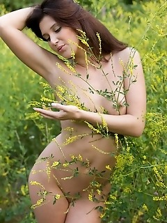Getting intimate outdoors with a naturally beautiful brunette.